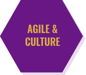 Ankerlink Agile Culture