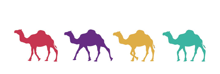 Seminar Apache Camel mit der viadee